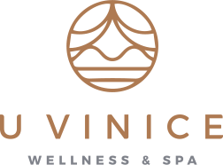 logo wellness & spa u vinice